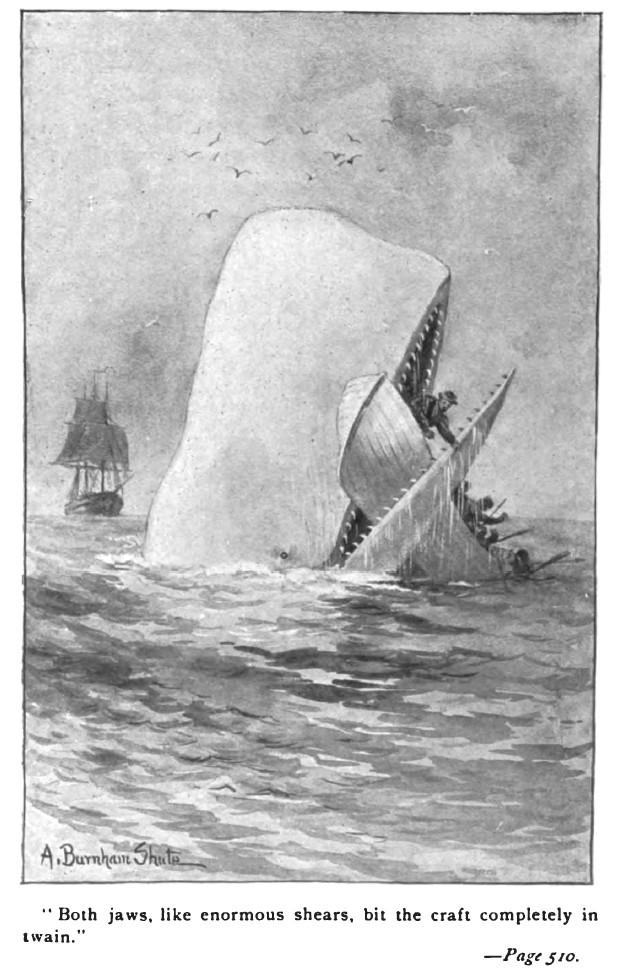 《白鯨記》內頁。圖片來源:維基百科