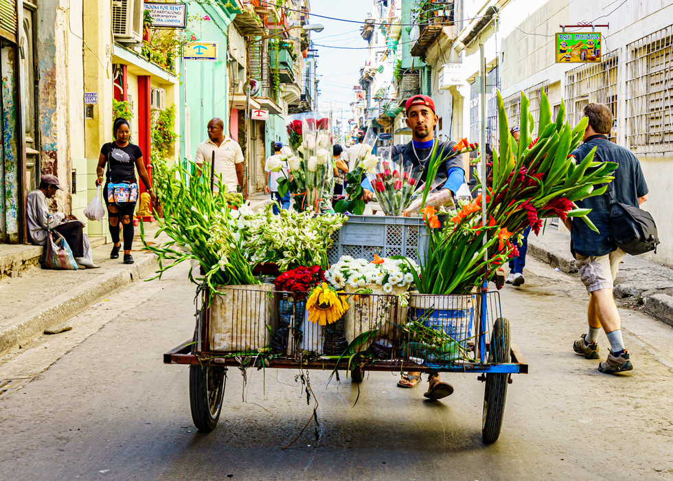 A Street Flower Vendor