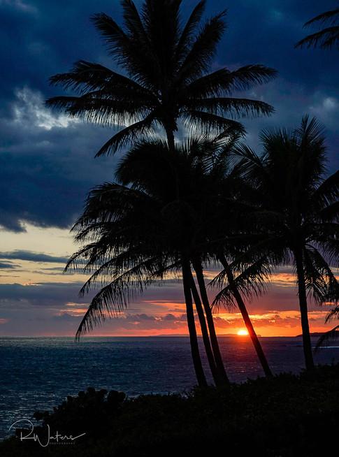 Hawaii-103