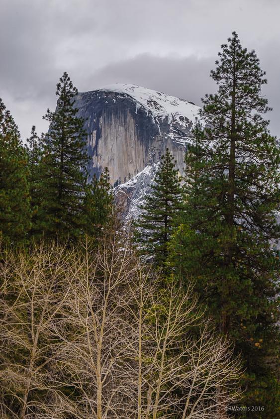 Yosemite-106