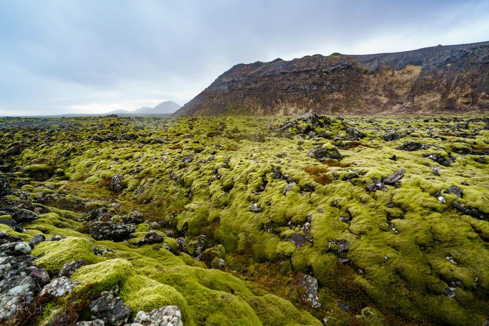 Iceland-102