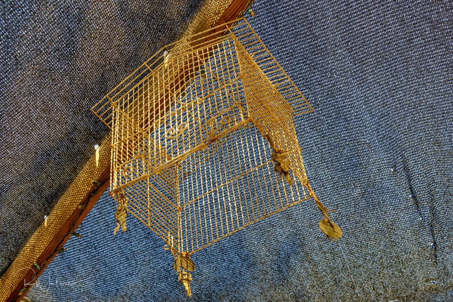 The Empty Cage