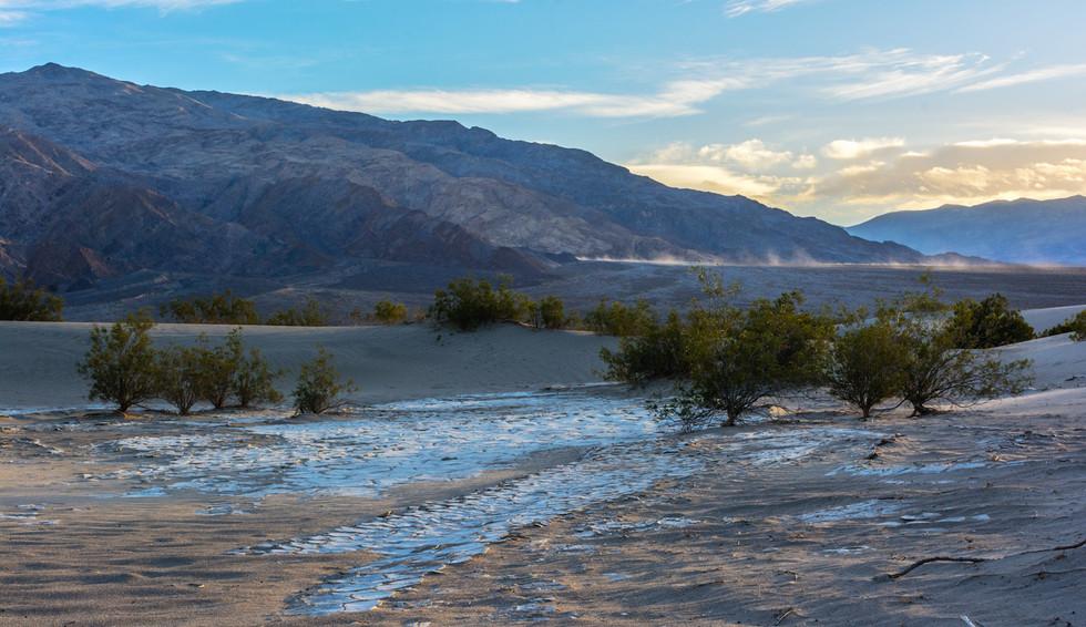Desert Sunrise Mesquite Dunes