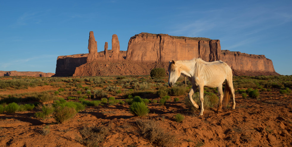 Monument Valley-109