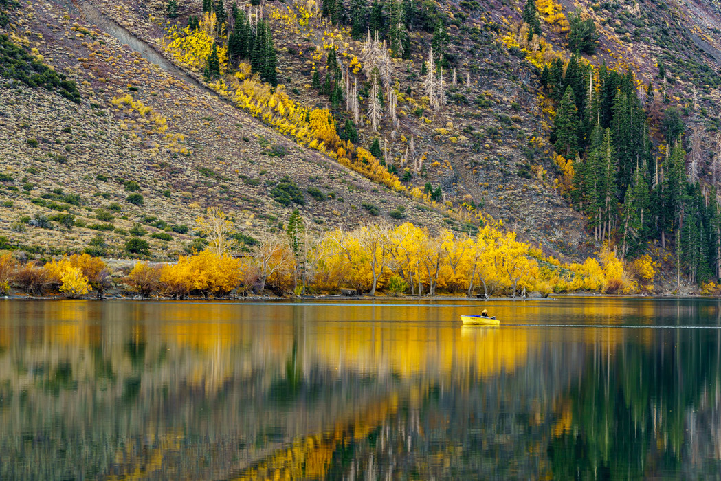 A Fisherman On Convict Lake