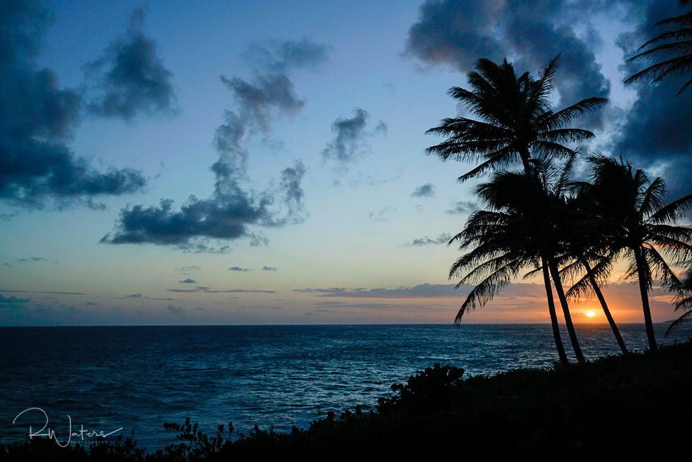Hawaii-101