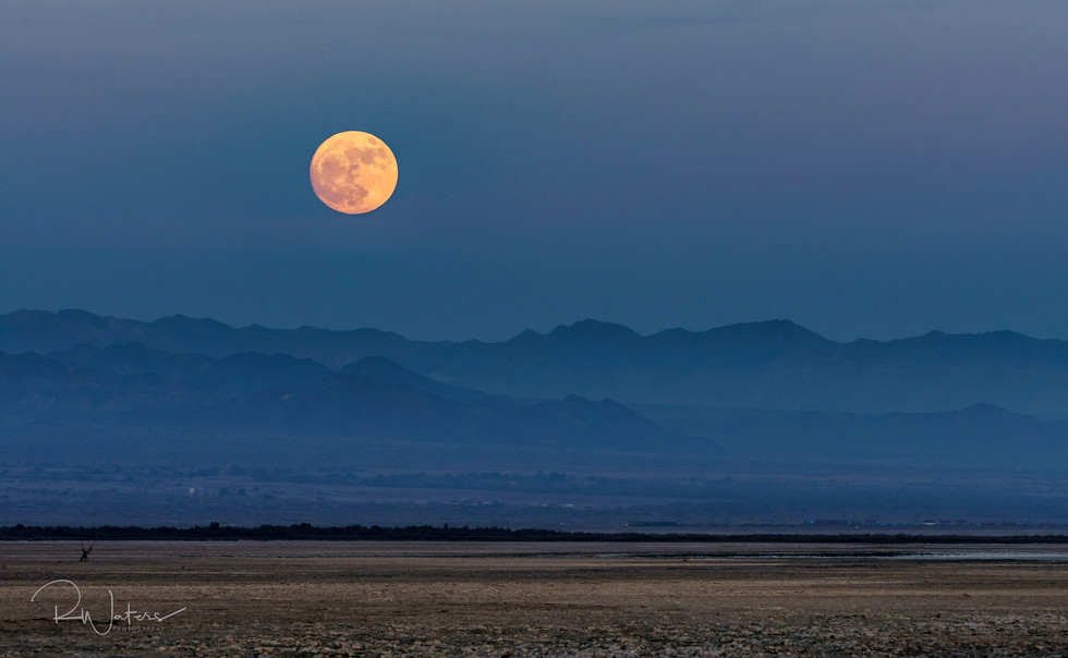 A Yellow Moon On The Dead Sea