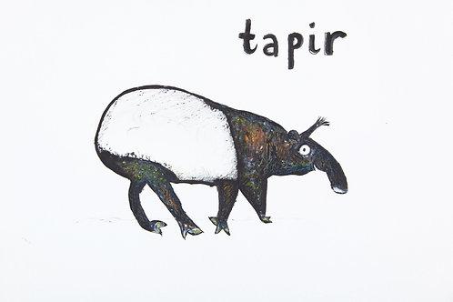 Original Tapir