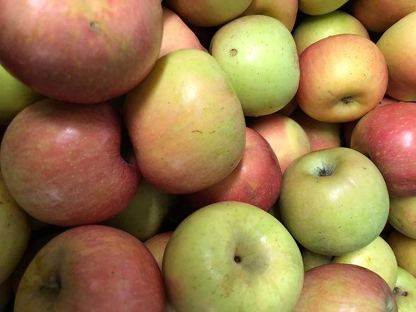 apples_edited_edited.jpg