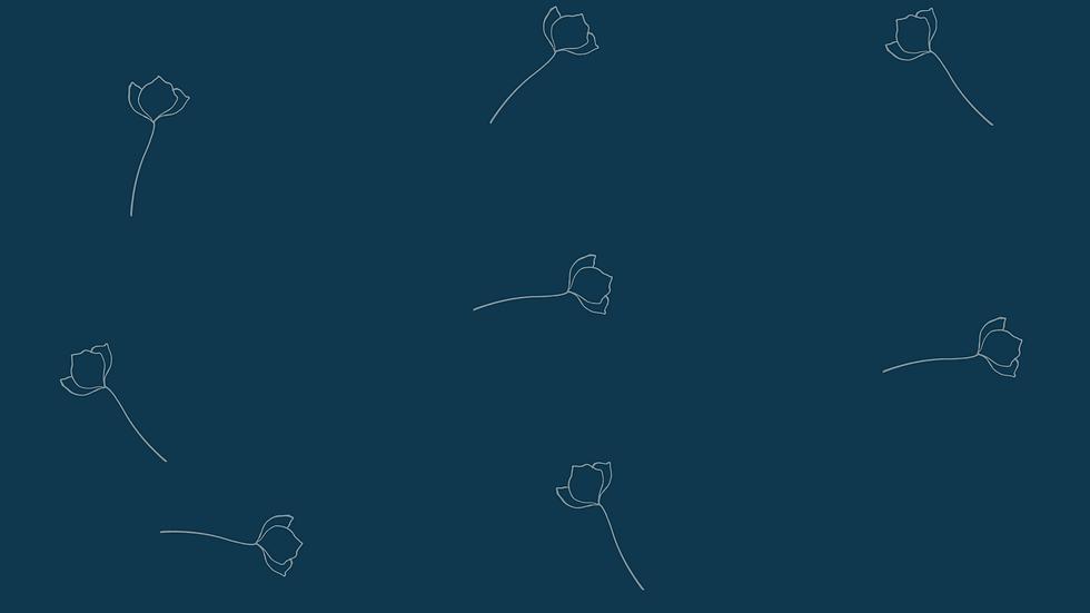 Website Designs(15).png