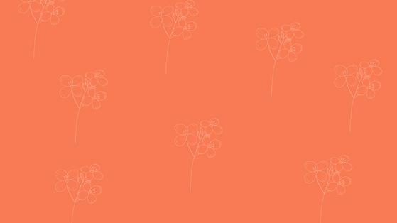 Website Designs(21).png
