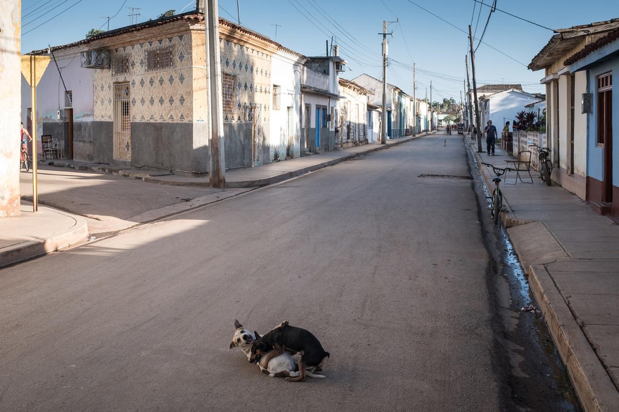 Kuba 2017 Remedios-8389