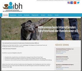 Seitenansicht IBH.JPG