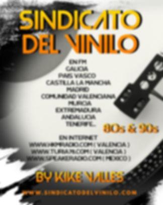 SINDICATO DEL VINILO.jpg