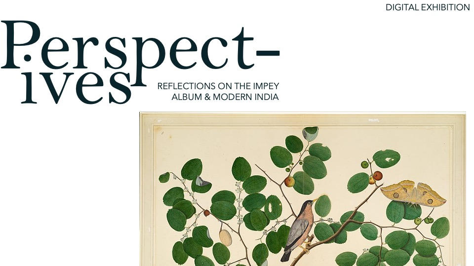 Perspectives: Reflections on the Impey Albums and Modern India