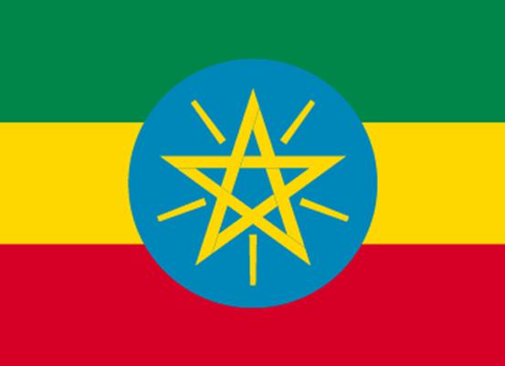 モカ エチオピア ベレガ