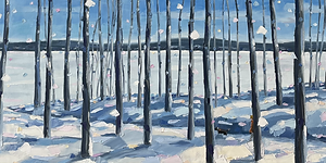 Lake view through the trees 20x60