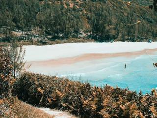 Trilhas Ecológicas: os benefícios de estar conectado à natureza