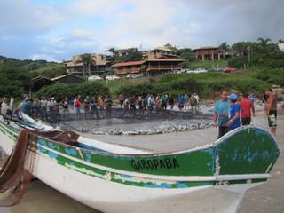 Pesca Artesanal da Tainha em Garopaba - temporada 2017
