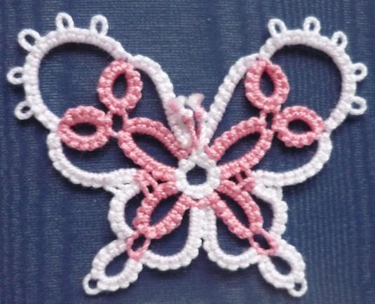 Daisy Picot butterfly.jpg