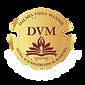 DVM School
