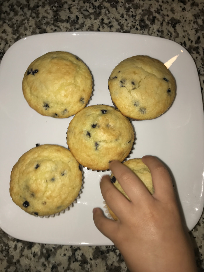 Blueberry Muffins- Toddler Approved