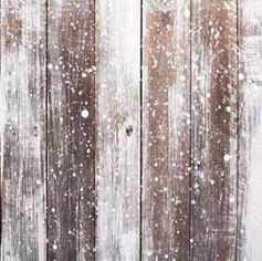Xmas Wood with Snow