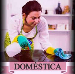 Domestica3
