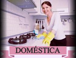 Domestica5