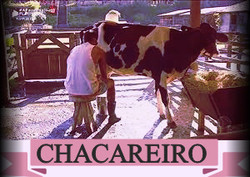 Chacareiro