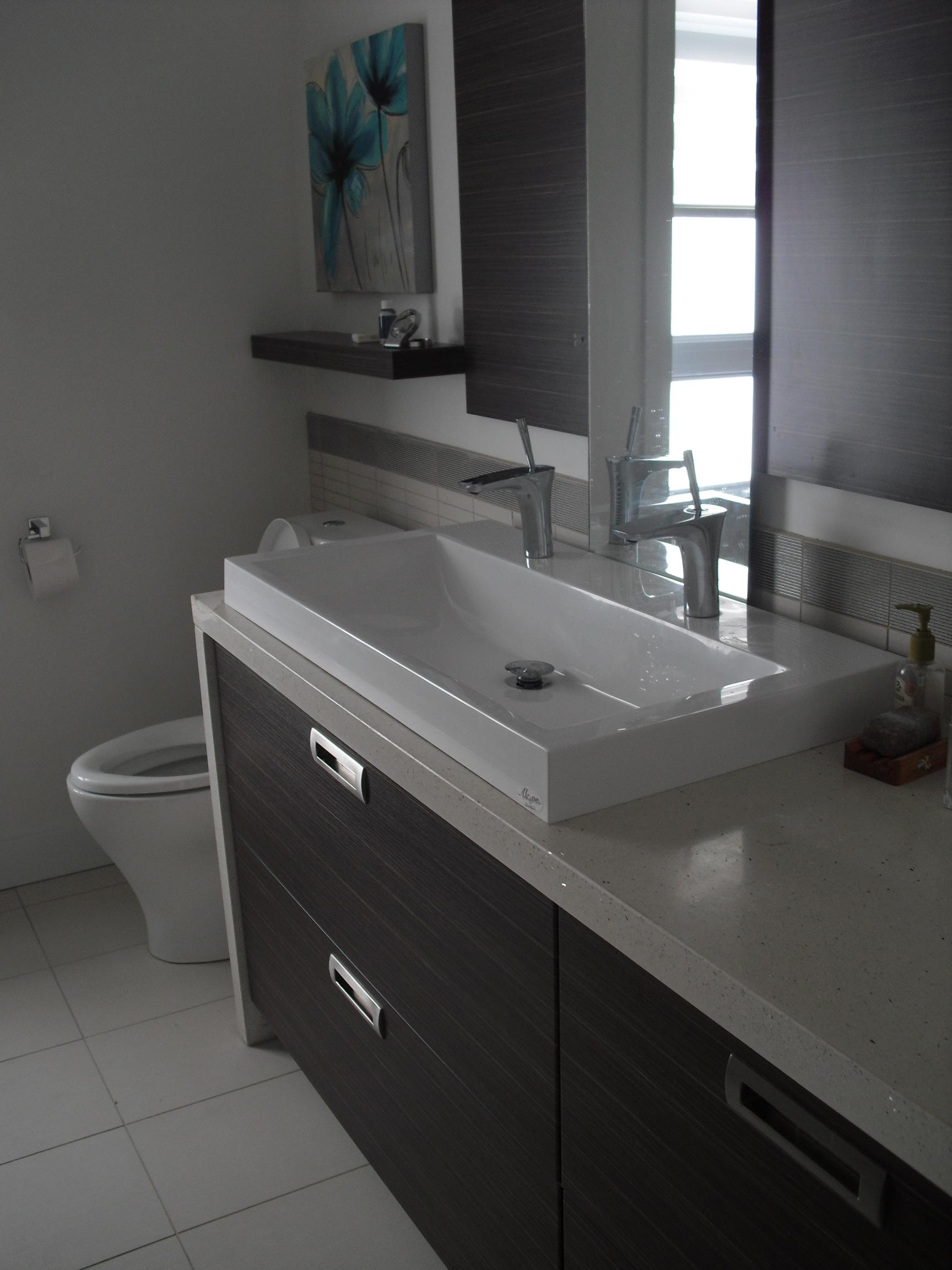 lavabo douchette pour lavabo salle bain. Black Bedroom Furniture Sets. Home Design Ideas