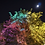 Thumbnail: Moon and Tree
