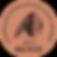 AIOA-2019-BRONZE-hi-res-IMAGE.png