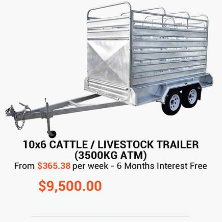 10x6-cattle.jpg