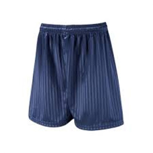 Navy Shadow Stripe PE Shorts