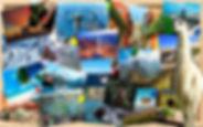 sudamericaweb.jpg
