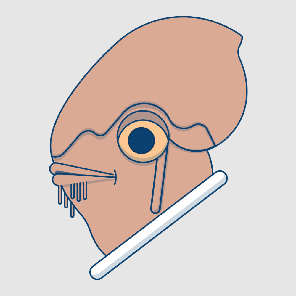 Illustration - Admiral Ackbar
