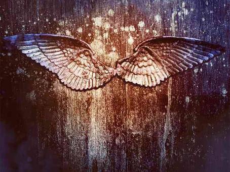 Sunday Reading - Angelfall