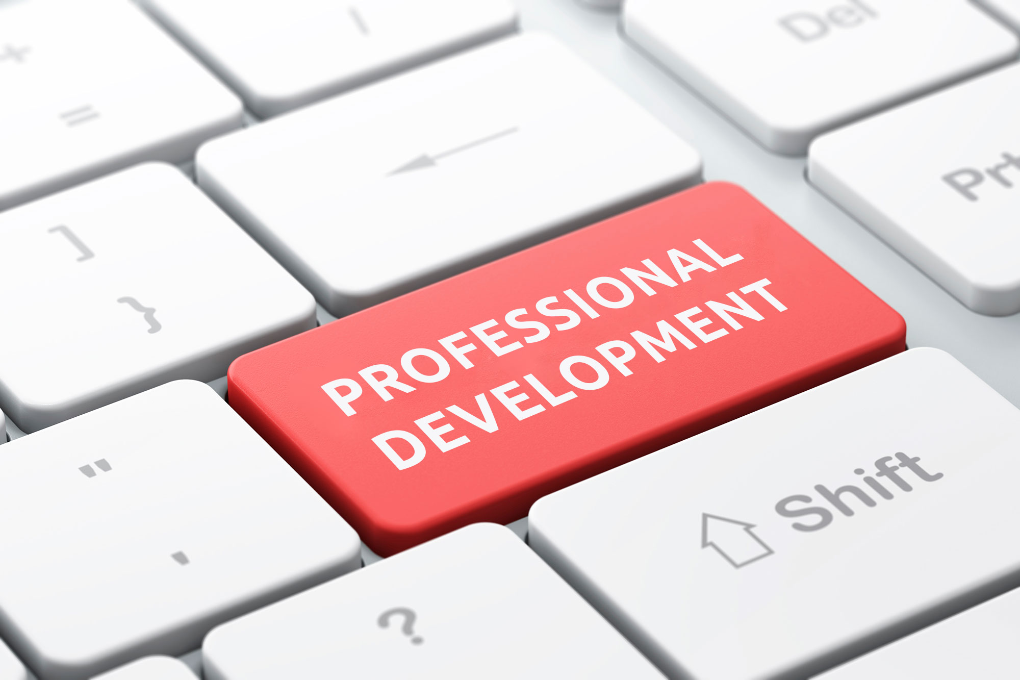 Online Professional Development