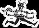 logo_Van_Diemen_50x_m.png