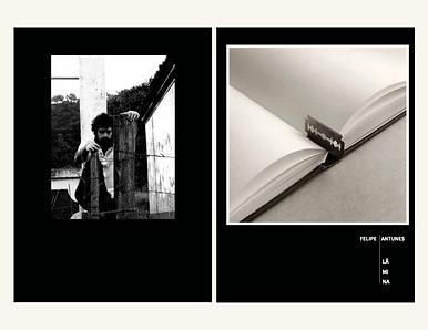 album-livro lamina.png