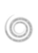 Spirale_Modul_V.png