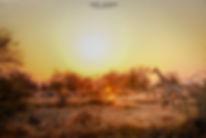 0370_SunsetDrive076.jpg