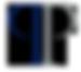 Patronus Partners Ltd Logo