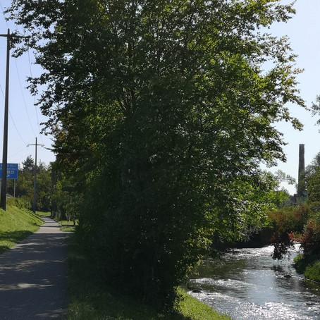 Tour 21 – Glatte Rhein-Runde