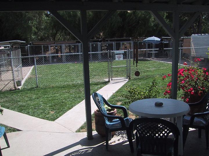 8-03 Kennel yard.JPG