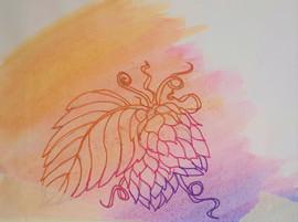 hops-rainbow