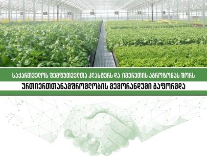 Memorandum of Understanding between Imereti Agro Zone (IAZ) and PMAG Packaging Cluster