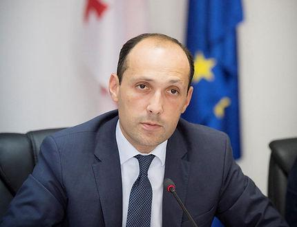 Minister_Davitashvili.jpg