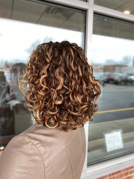 Curly Cut - Buffalo, NY
